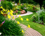 our new additional landscaping services include patio and walkway installation.